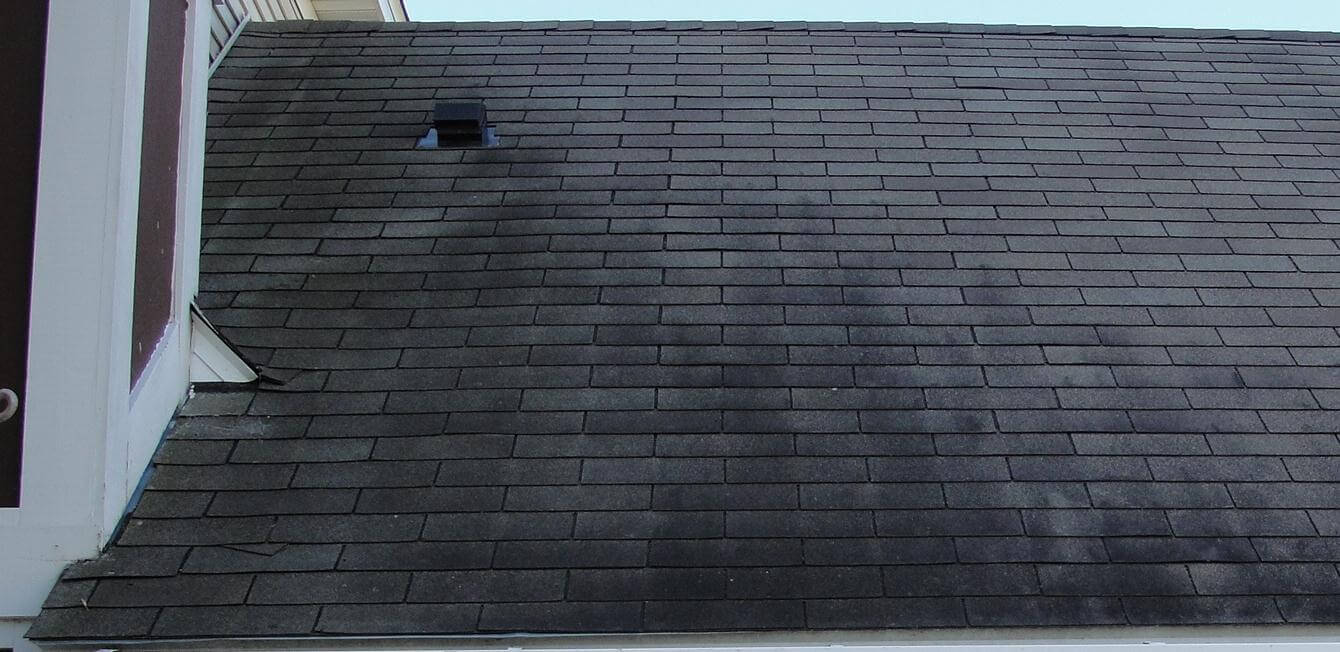 Let's Talk About Those Black Stains On Your Roof
